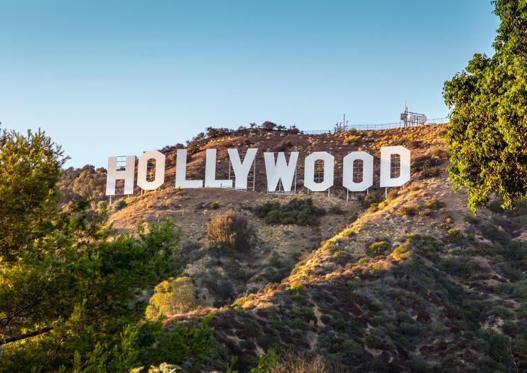 Hollywood Leftist Offers $20k Reward for INFO on 'MAGATS'